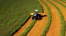Fotografia de uma máquina efetuando uma colheita.